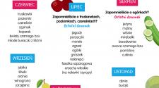 domowe przetwory wyspa-kobiet.pl