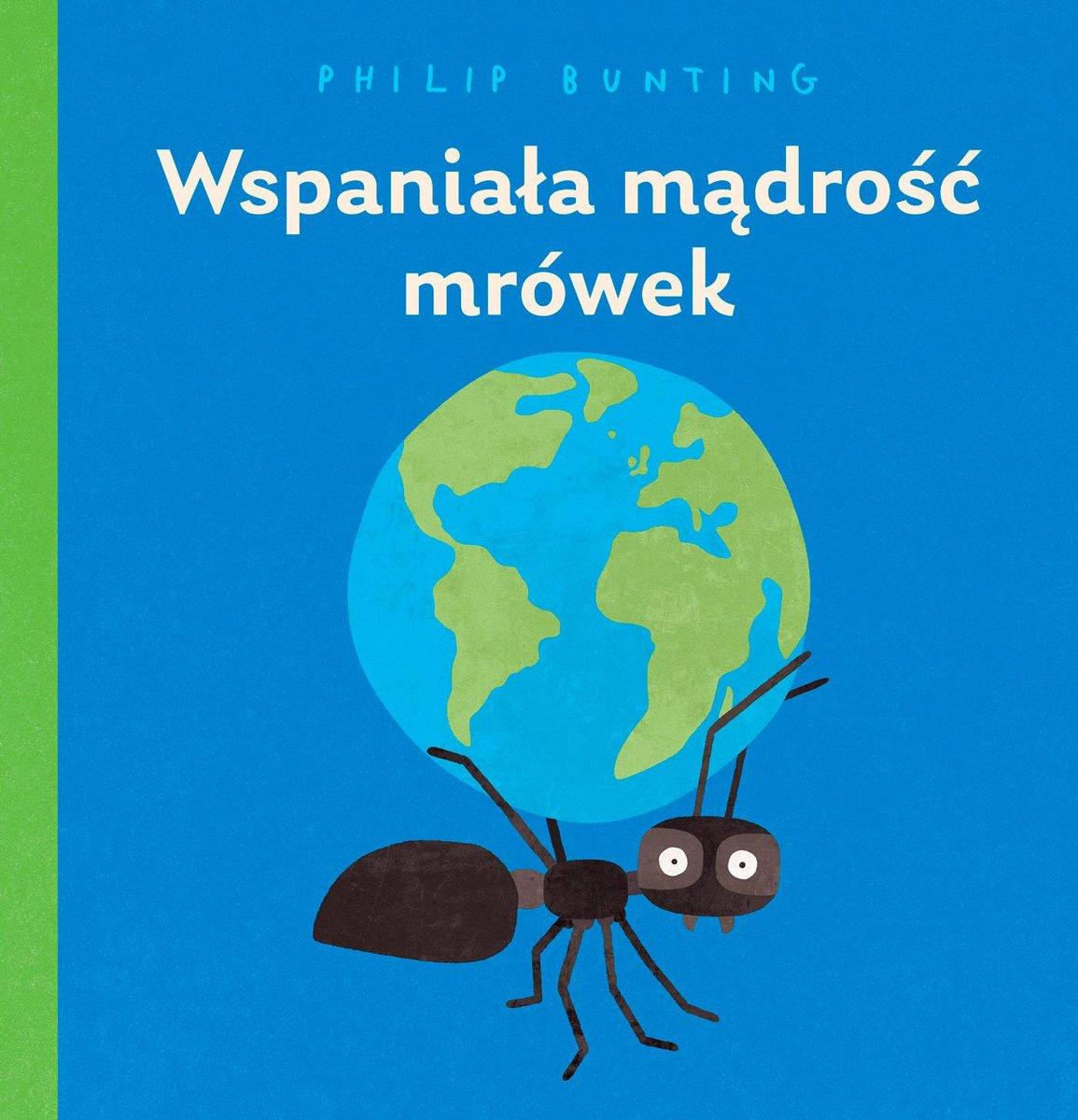 Wspaniała mądrość mrówek wyspa-kobiet.pl