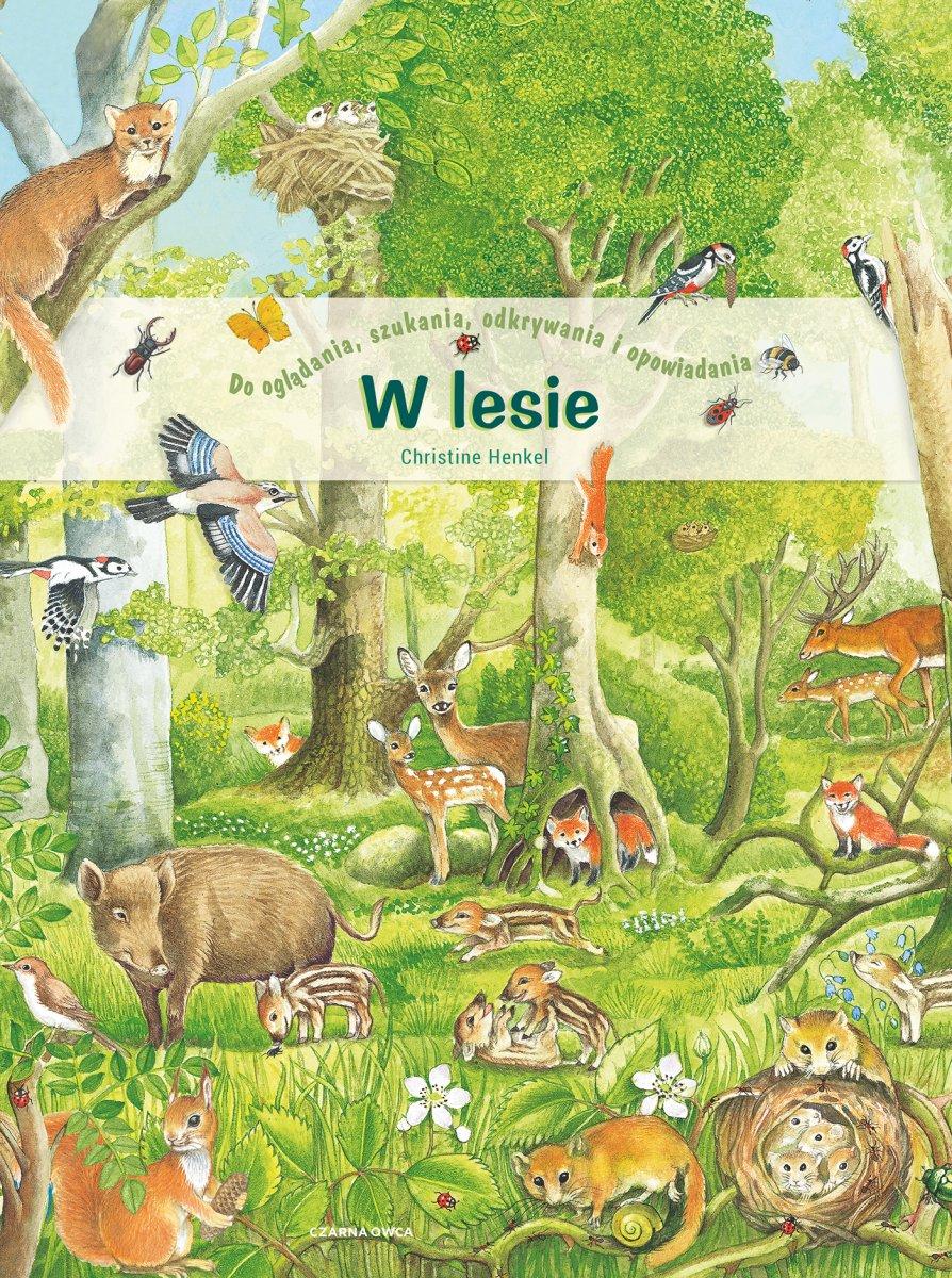 W lesie www.wyspa-kobiet.pl
