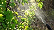 ekologiczne środki czystości wyspa kobiet